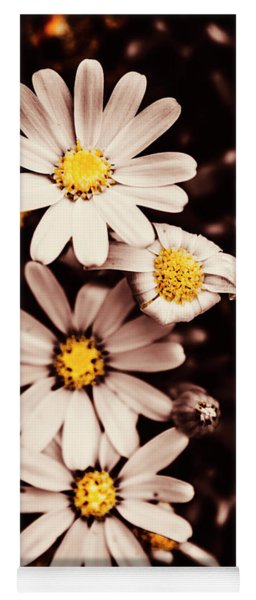 Wilting And Blooming Floral Daisies Yoga Mat
