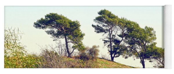 Wind Blown Trees Yoga Mat