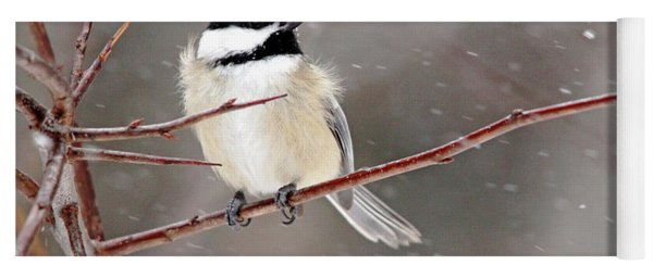 Windblown Chickadee Yoga Mat