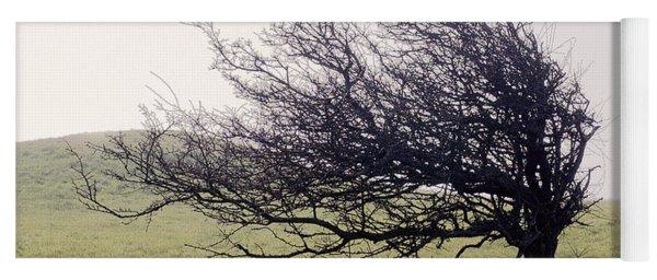 Windswept Tree Yoga Mat