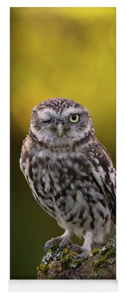 Winking Little Owl Yoga Mat