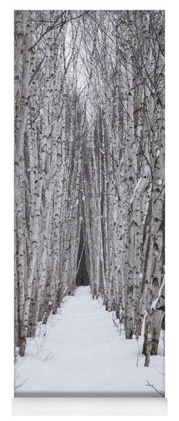 Winter Birch Path Yoga Mat
