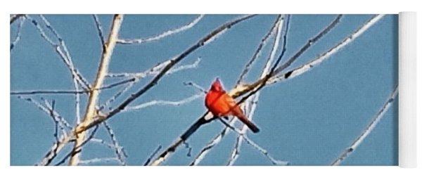 Winter Cardinal  Yoga Mat