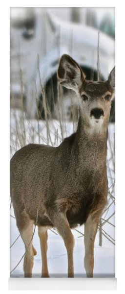 Winter Deer On The Tree Farm Yoga Mat