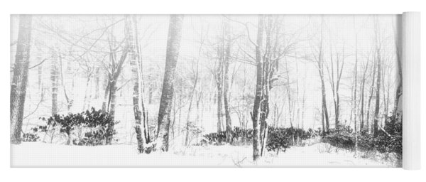 Snowy Forest - North Carolina Yoga Mat
