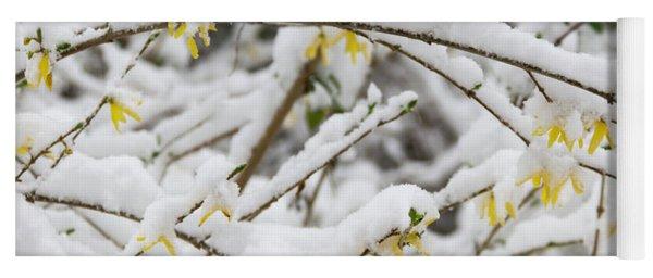 Winter In Spring Forsythia 1 Yoga Mat