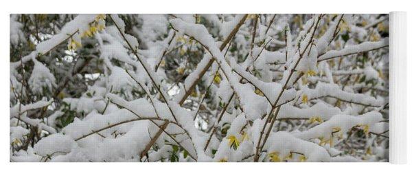 Winter In Spring Forsythia 2 Yoga Mat