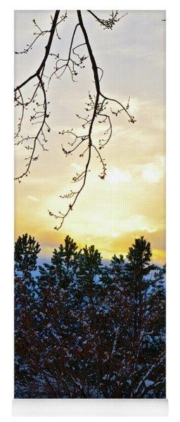 Winter Sunset On The Tree Farm #2 Yoga Mat