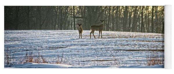 Wisconsin Whitetail Deer Yoga Mat