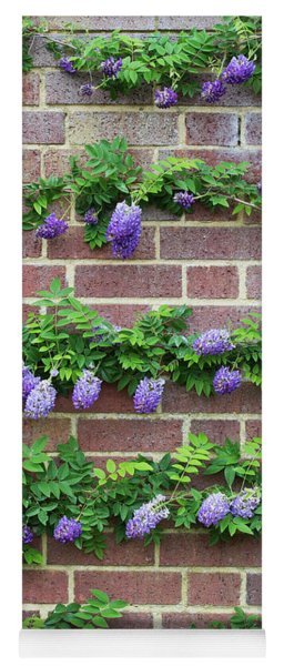 Wisteria Frutescens Longwood Purple Yoga Mat