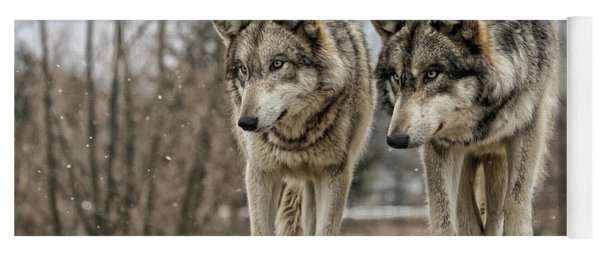 Wolf Pair Yoga Mat