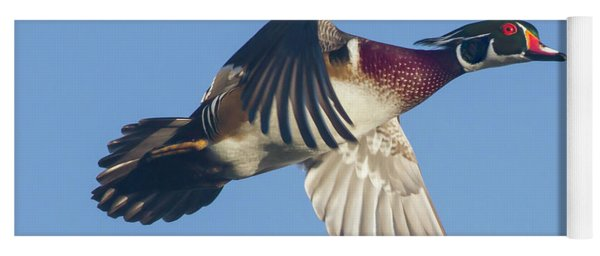 Wood Duck Flying Fast Yoga Mat