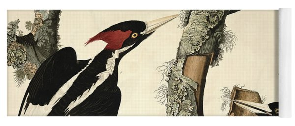 Woodpecker Yoga Mat