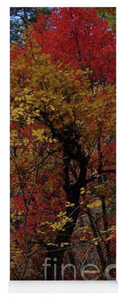 Woods In Oak Creek Canyon, Arizona Yoga Mat
