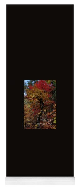 Woods In Oak Creek Canyon, Arizona Yoga Mat