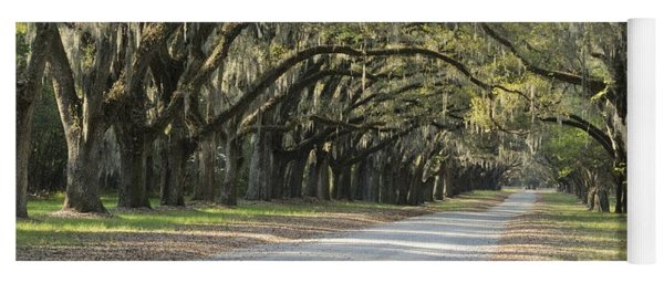 Wormsloe Entrance Road Yoga Mat