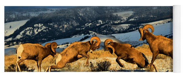 Wyoming Bighorn Brawl Yoga Mat