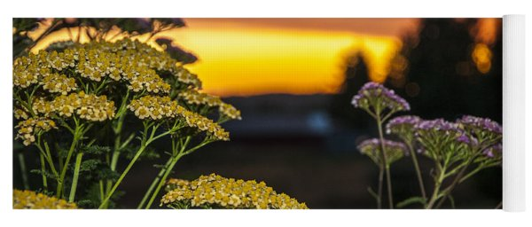 Yarrow At Sunset Yoga Mat