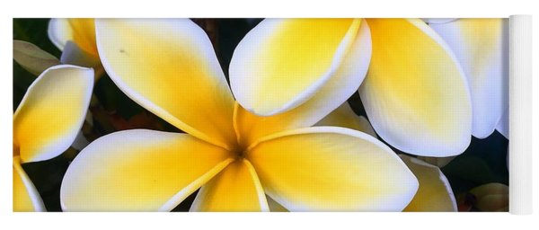 Yellow And White Plumeria Yoga Mat