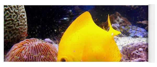 Yellow Angel Fish Yoga Mat