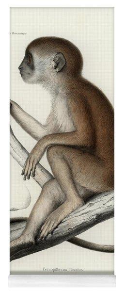 Yellow Baboon, Papio Cynocephalus Yoga Mat