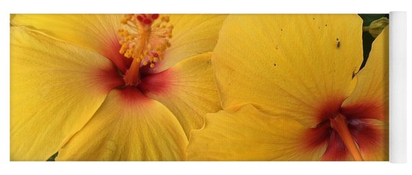 Yellow Beauties Yoga Mat