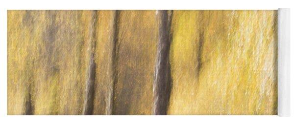 Yoga Mat featuring the photograph Yellow Birch Trees by Karen Van Der Zijden