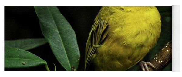 Yoga Mat featuring the photograph Yellow Bird by Pradeep Raja Prints
