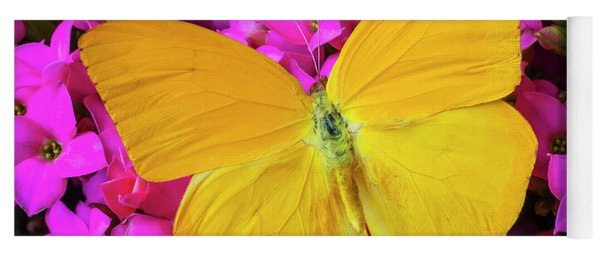 Yellow Butterfly On Pink Kalanchoe Yoga Mat