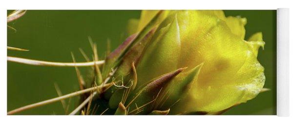 Yellow Cactus Flower Yoga Mat