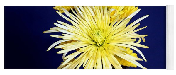Yellow Chrysanthemums On Blue Yoga Mat