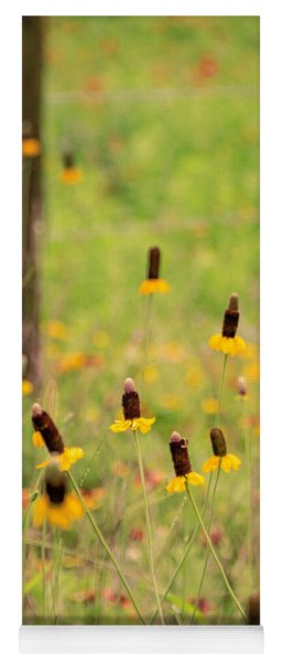 Yellow Cone Flower Yoga Mat