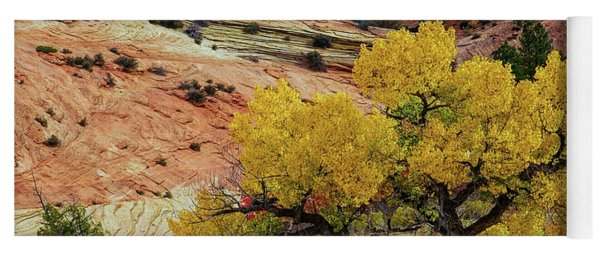 Yellow Cotton In Zion Park Yoga Mat