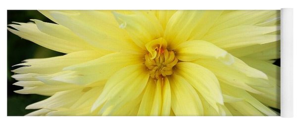 Yellow Dahlia Yoga Mat