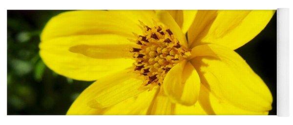 Yellow Flower Yoga Mat