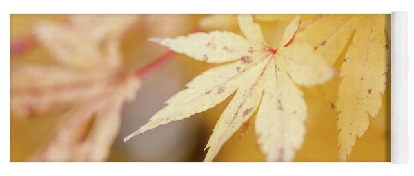 Yellow Leaf With Red Veins Yoga Mat