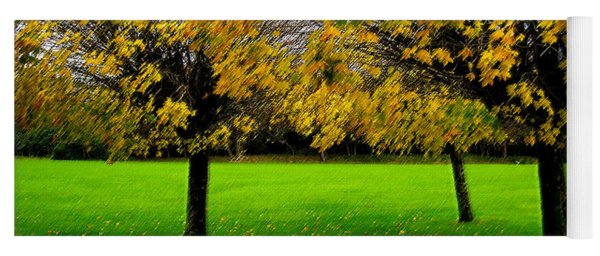 Yellow Leaves At Muckross Gardens Killarney Yoga Mat