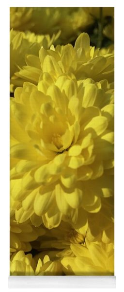 Yellow Mums Yoga Mat