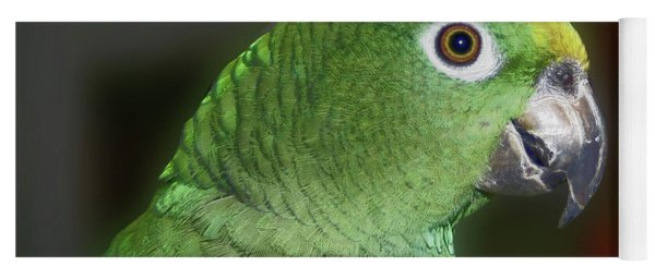 Yellow Naped Amazon Parrot Yoga Mat