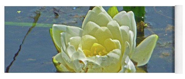 Yellow Nymphaea Alba Damselfy Yoga Mat