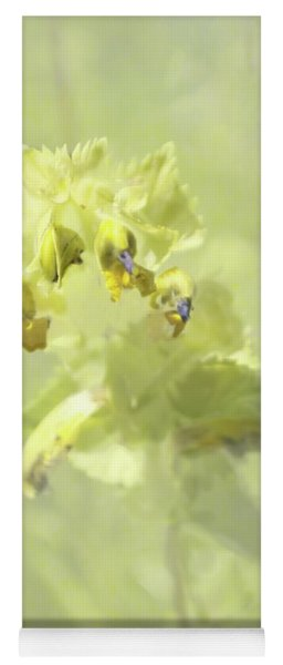 Yellow Rattle With Texture Yoga Mat