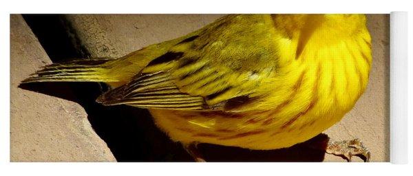 Yellow Warbler Yoga Mat