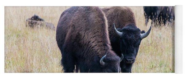 Yellowstone Bison Yoga Mat