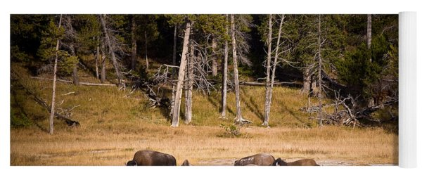 Yellowstone Bison Yoga Mat