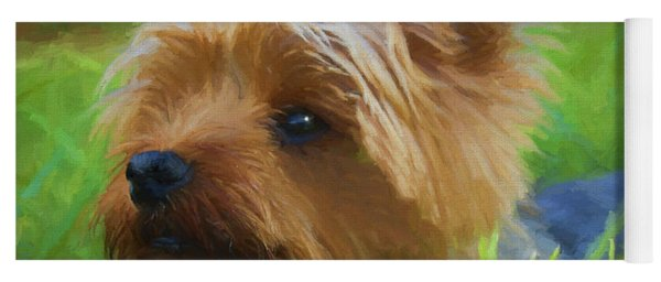 Yoga Mat featuring the painting Yorkie In The Grass - Painting by Ericamaxine Price