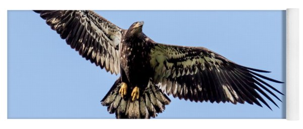 Young Bald Eagle Flight Yoga Mat