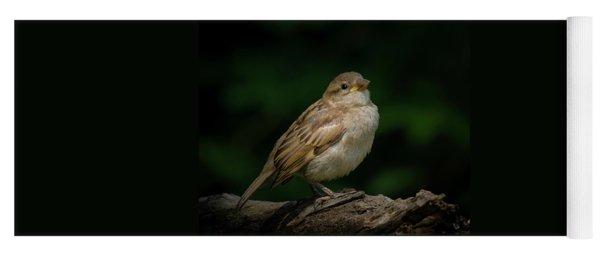 Young House Sparrow Yoga Mat