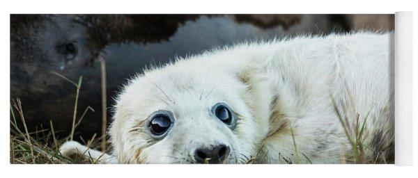 Young Pup Yoga Mat