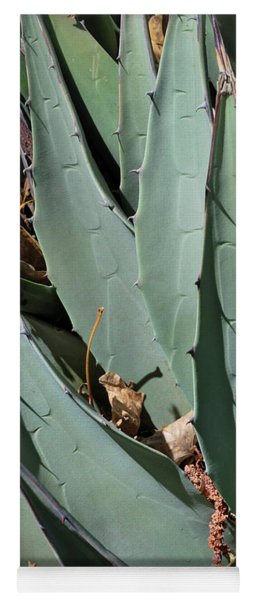 Yucca Leaves Yoga Mat