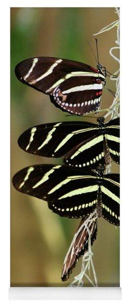 Zebra Butterflies Hanging On Yoga Mat